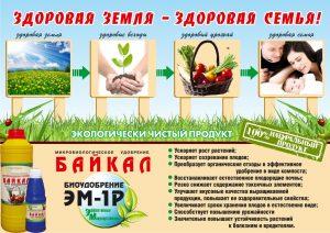 Здоровая земля-здоровая семья